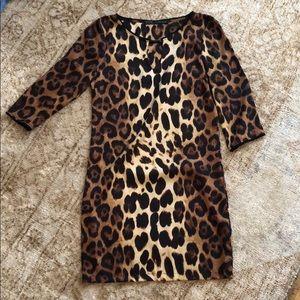 Zara leopard dress size xs